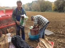 Monococco in Umbria - Gli Agricoltori