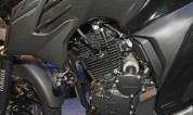 New-Yamaha-FZ25-cicak-kreatip-1