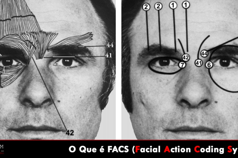 Facial Action Coding System Paul Ekman Action Units Upper Face