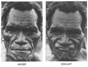 paul ekman pesquisa papua nova guine fore