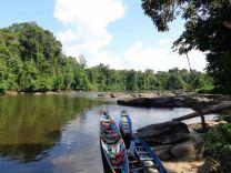rivière Corantijn au Suriname 2