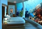 aquarium chambre 2