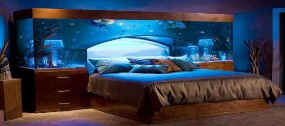 aquarium chambre
