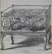 3-aquariumhist-river-aquarium-1860