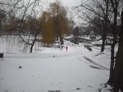 zima-w-parku