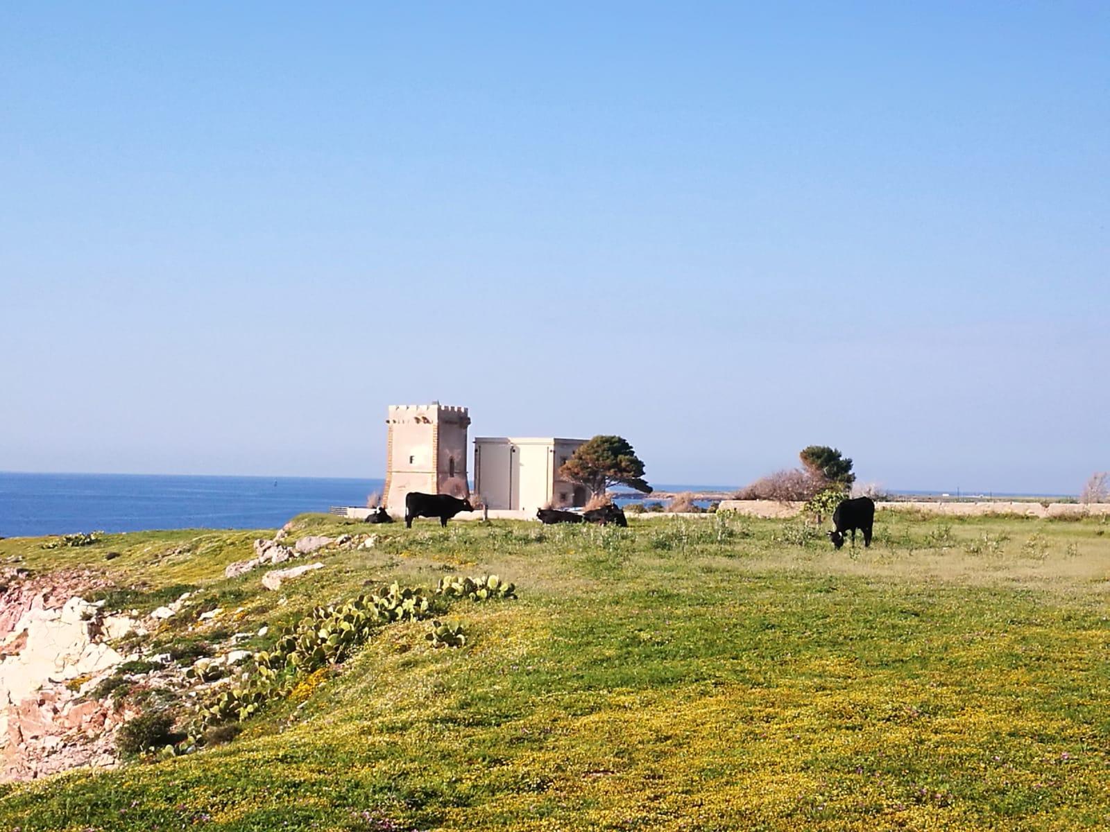 Best of the West Biking Trip in Sicily