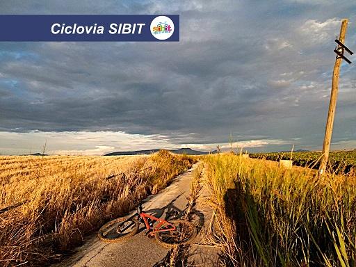 SIBIT_sito_foto_01__ridotta
