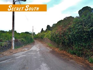Secret South_FB_album_03