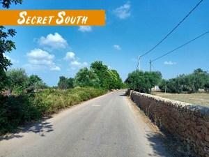 Secret South_FB_album_29