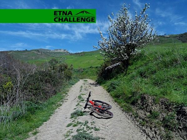 etna challenge_album_FB_06