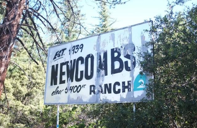 Newcombs03