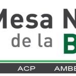 copy-MesaNacionalCABEC2.jpg