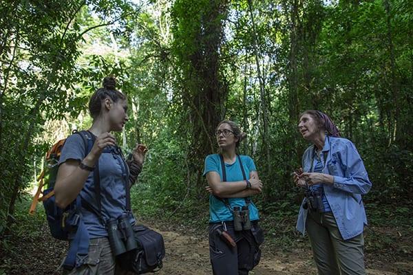 Mulheres na conservação: Karen Strier | CicloVivo