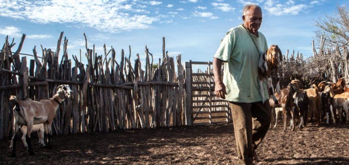Reforma da Previdência pode ser o fim da aposentadoria rural, afirmam agricultores de Paulistana, em reportagem do UOL