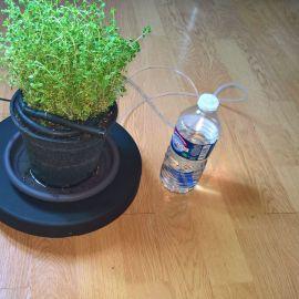 Votre plante en meilleure santé grâce à un arrosage monitoré