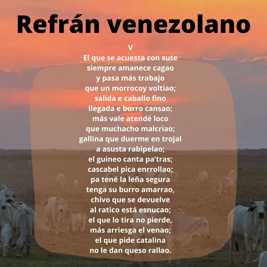 Refranes venezolanos, mejores refranes venezolanos