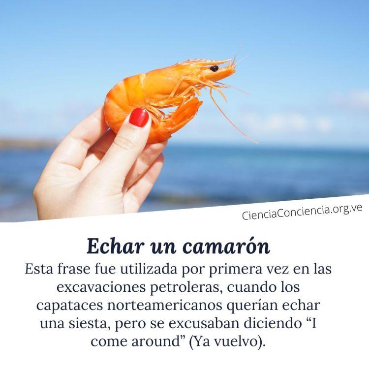 Echar un camarón