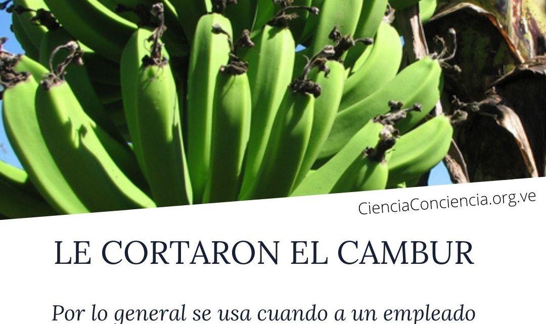 Expresión popular: LE CORTARON EL CAMBUR