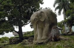ciencia cubana_ciencia de cuba_zoológico de piedra de guantánamo_6
