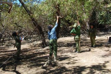ciencia de cuba_ciencia cubana_manglares de cuba_santiago de cuba_III Taller Regional de Formación de Capacidades para el Manejo Costero (12)