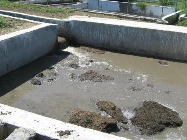 ciencia de cuba_portal de la ciencia cubana_uso del biogas en fincas agropecuarias (3)