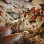 ¿Cómo se formó la Cueva de los Cristales?