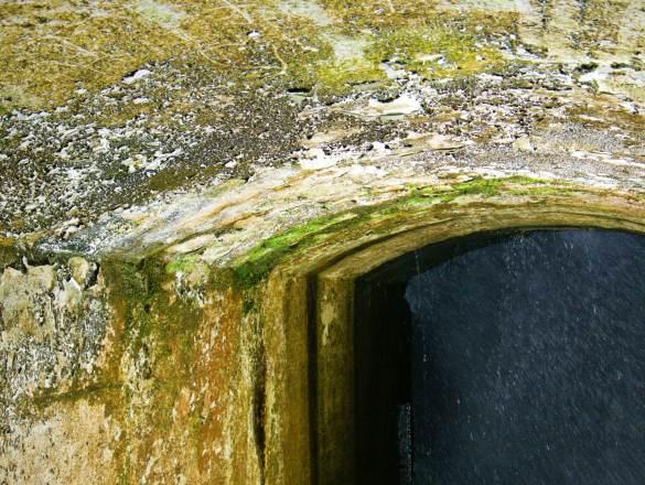 A to ten grzyb w tunelu...