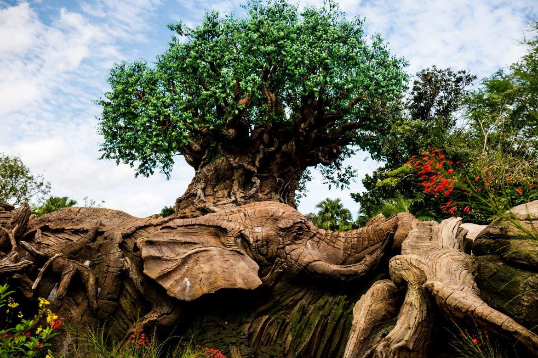 Drzewo życia - Animal Kingdom w Disney World, Orlando
