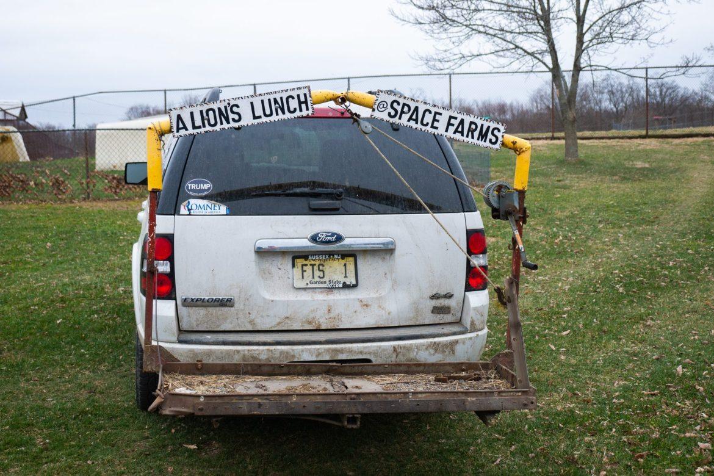 Jedzenie dla lwów... Space Farms