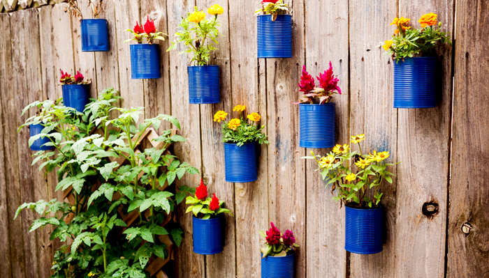 Tin Can Fence Flower Garden
