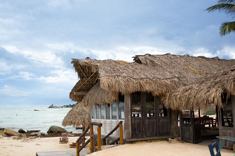 Zamas Palm Tree Structure Beach View