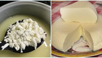 Домашня бринза — за простим та смачним рецептом. Спробуйте, вам сподобається