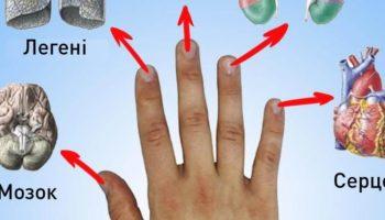 Лікарі Китаю рекомендують робити масаж пальців, аби покращити здоров'я