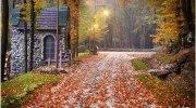 Дивовижна українська осінь. 25 неповторних осінніх пейзажів у різних куточках України