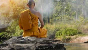 Як реагувати на заздрість і злість оточуючих: мудра притча