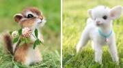 Майстриня створює з вовни милих тваринок, які виглядають наче герої дитячих мультиків