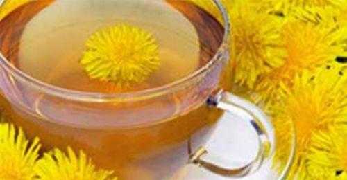 Karahindiba çayı ile kanseri yendi