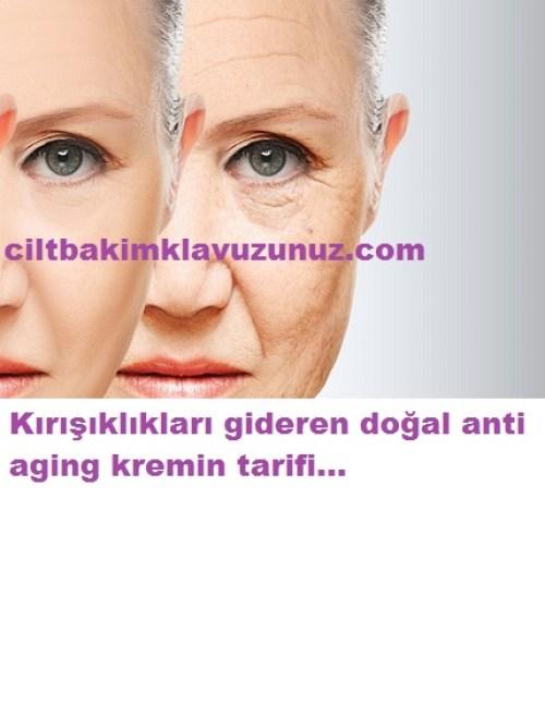 kırışıklık gideren anti aging krem tarifi