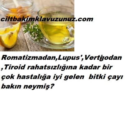 ROMATİZMA LUPUS TİROİD-BİR ÇOK HASTALIĞA İYİ GELEN ÇAY