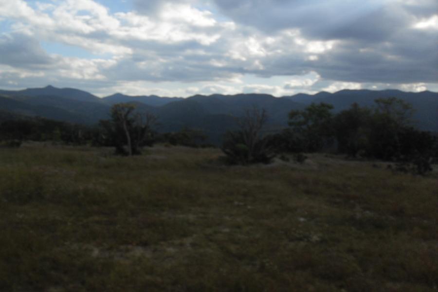 paisaje_GabrielaMendozaVázquez