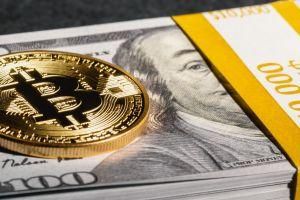 BitPay Processes More Volume, Transaction Count Remains Unchanged 101
