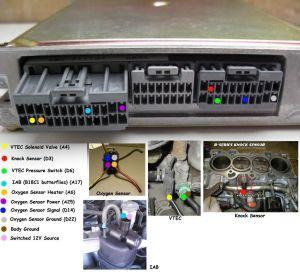 Ecu plug wiring question  HondaTech  Honda Forum Discussion