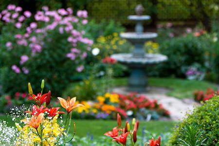 Great Backyard Landscaping Ideas   DoItYourself.com on Nice Backyard Landscaping Ideas id=30657