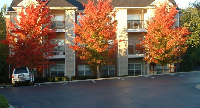Image Of Preserve At Bwood Apartments In Nashville Tn