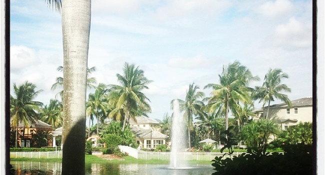 Image Of Bermuda Island Apartments In Naples Fl