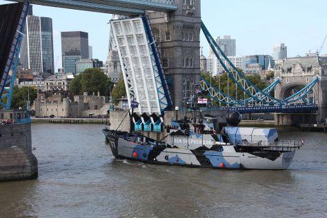 The MY Steve Irwin going up river through Tower Bridge London 12 September 2011. (Wikimedia Commons)