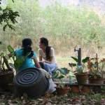 Sang Sattawat, Syndromes and a Century