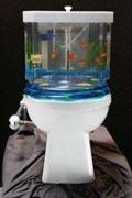 gabinetto acquario