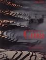Omaggio alla Cina