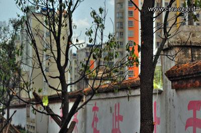 flebo per alberi